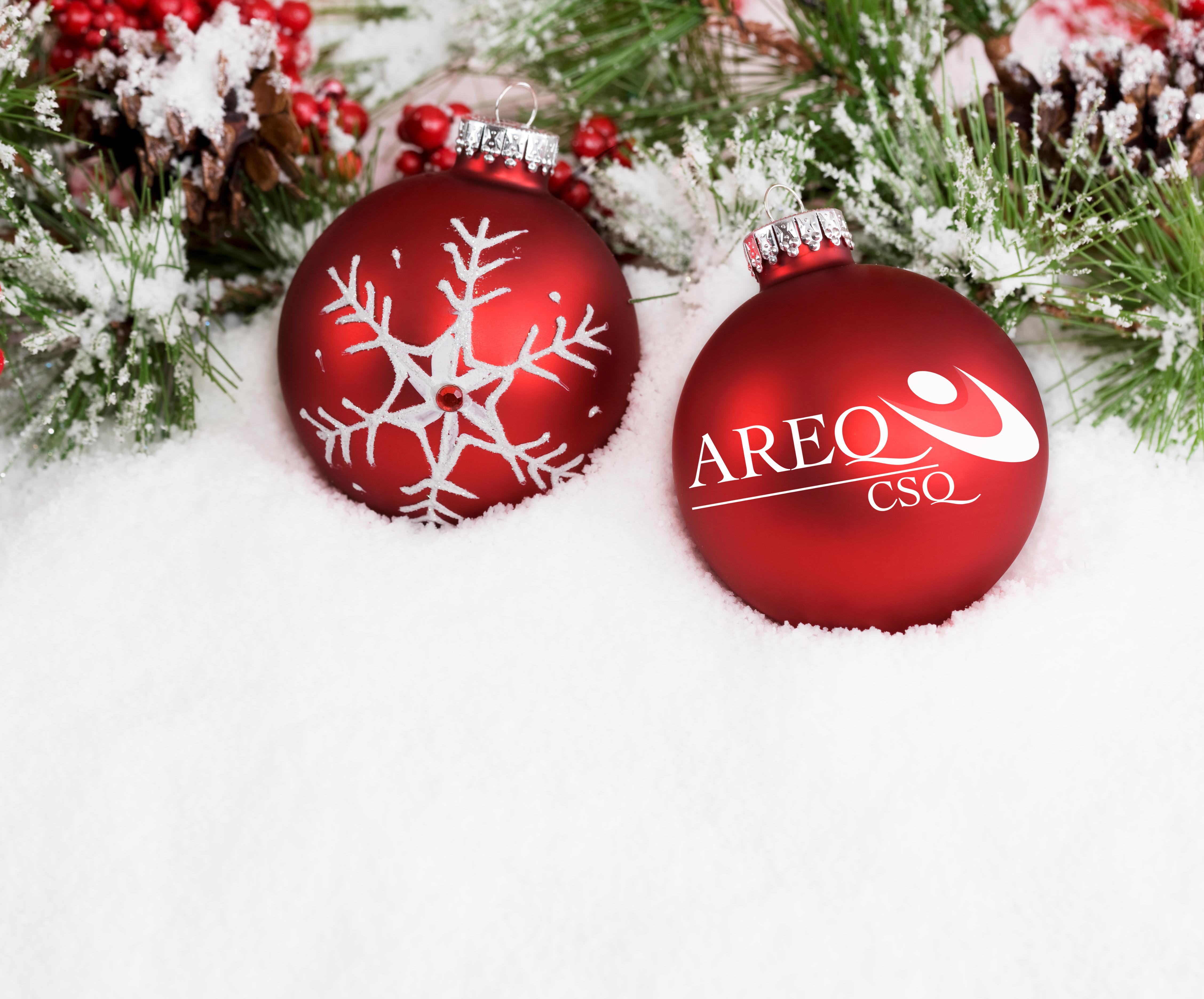 Un joyeux temps des fêtes à tous nos membres!
