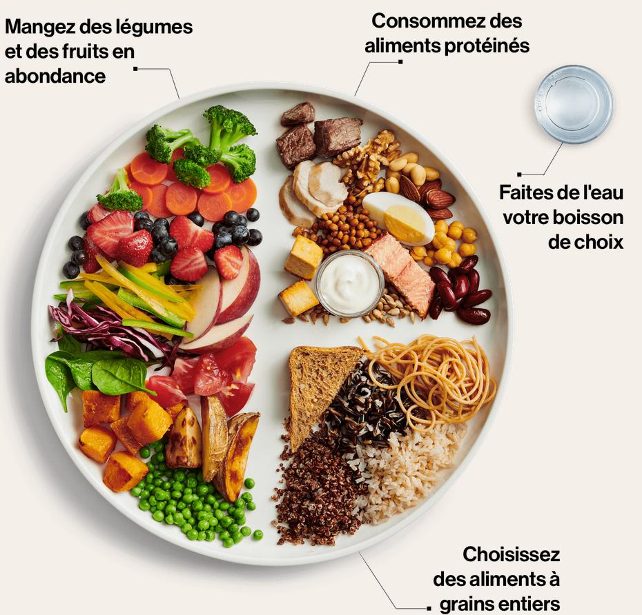 Le nouveau guide alimentaire canadien est maintenant disponible