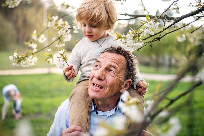 L'AREQ collabore à un projet de recherche sur la grand-parentalité au masculin
