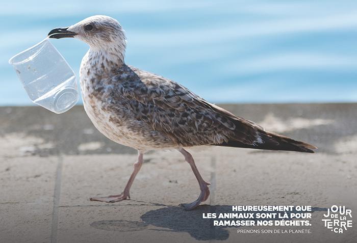 Jour de la Terre – L'AREQ s'investit dans le dossier de l'environnement même en temps de pandémie